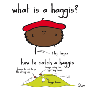 what-is-a-haggis