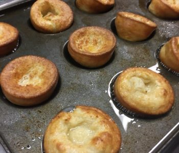 The Arty Tart Yorkies